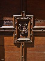 A NOBLE DOOR by isabelle13280