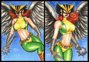 HAWK GIRL PERSONAL SKETCH CARDS by AHochrein2010