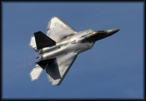 F22 Raptor with fluff by carol68