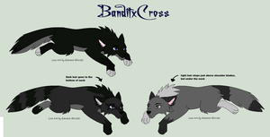BanditxCross for SamithaM by Sterling-Adopts