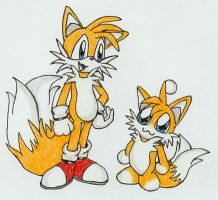 Tails and Tails Chao by wandablazer