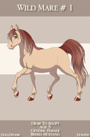 Wild Mare Free Adopt by Golden-Apple-Acres