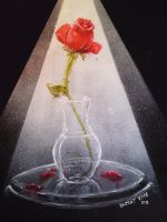 A Single Rose by VisualSymphonyStudio