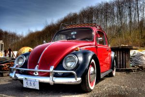 Volkswagen Bug 2 by Vidiphoto