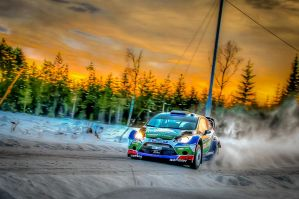 Rally Sweden -12 by Aniceguy67