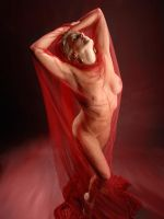 5493-DK Beautiful Mature Woman Nude with Red Lace by artonline
