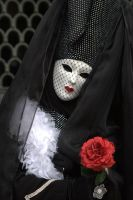 Carnival of Venice 2006 VI by vdsphoto