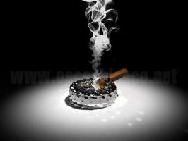 Cigar and Smoke 3d Render by otas32