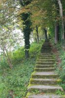 Stairway to the castle by dark-columbia