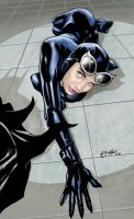 catwoman colored by AllJeff