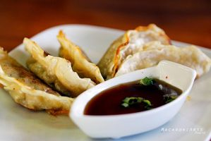 Gyoza by thebreat
