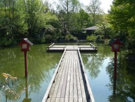 chinese pond by two-ladies-stocks