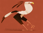 Daily Design: Secretary Bird by sketchinthoughts