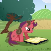 Reading In The Summer! by 4EverRandomPuppy20