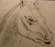 Horse head by Ultimaodin