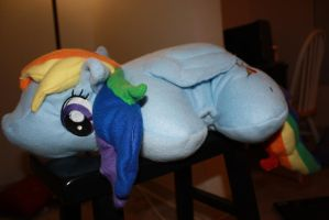 Rainbow Dash pillow pet by titanstargirl