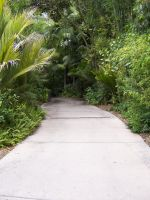 Greenery Path 1 by stock-it