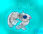 Adorable Jayfeather by PokeWarriorMelodies