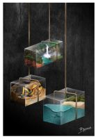 Suspended Glass Houses by Bradliam