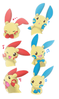 [Request] Minun and Plusle Expressions by Ivory-Luxray