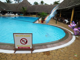 No Diving by OJhat