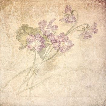 FREE TEXTURE VINTAGE FLOWERS #4 by My-AngelWings