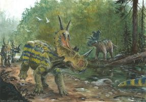 Horns25: Spinops and Albertaceratops by tuomaskoivurinne
