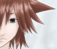 Improved Sora by Chinchikurin