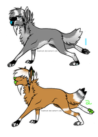 canines 3 -CLOSED- by adoptsmadefuryou