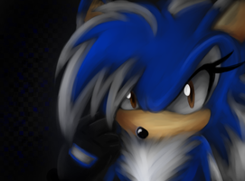 You're messing with the wrong hedgehog by shadzter