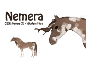 CSS's Nemera 23 by bubbIies