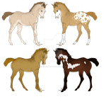 Foals point or draw adopt 1 [OPEN] by Pine-Hollow-Ranch
