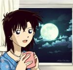 The Night Sky (Waiting for Kaitou Kid perhaps?~) by aoko-love-kaitou