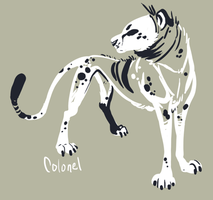 Ghostcheetah by Colonels-Corner