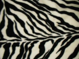 Texture-Zebra 2 by liz-stock