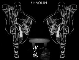 Shaolin Monks by Lord-Iluvatar
