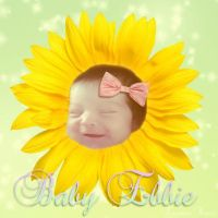 Baby Sunflower by Sinister666beauty
