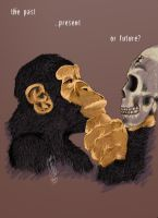 Monkey Philosophy by Sehad