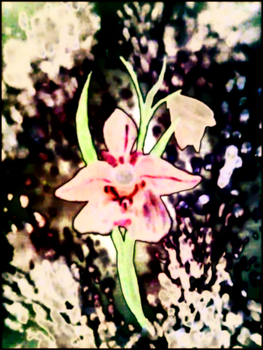 orchid1 by BotanyCoder