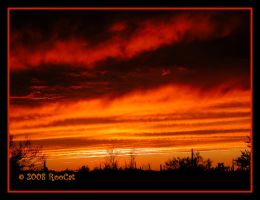Moody Broody Fall Storm Sunset by RooCat