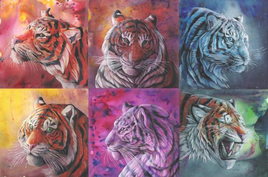 Tigercolours by dawndelver
