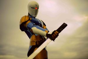 Gray Fox pose 2 by Diegator