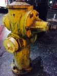 Hollywood Hydrants Have It Hard by Leelor