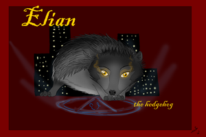Elian Contest Entry by WoofMewMew