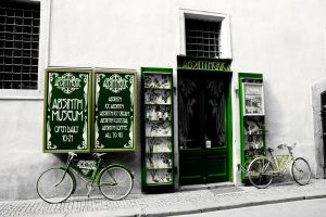 The green fairy by zeyus
