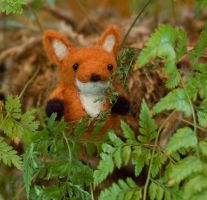 the quick brown fox... by spinphase
