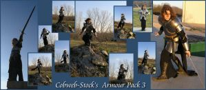 Armour Pack 3 by Cobweb-stock