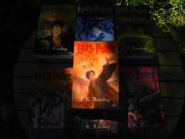 Harry Potter and the Deathly Hallows - Book. by AtilioA