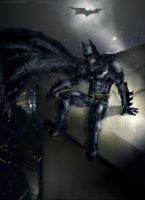 Dark Knight:Reflecting on Life by AceMan528