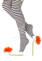 stripes and flowers by jordache